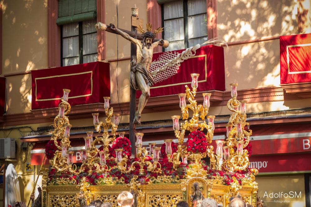 24 Días para el Domingo de Ramos