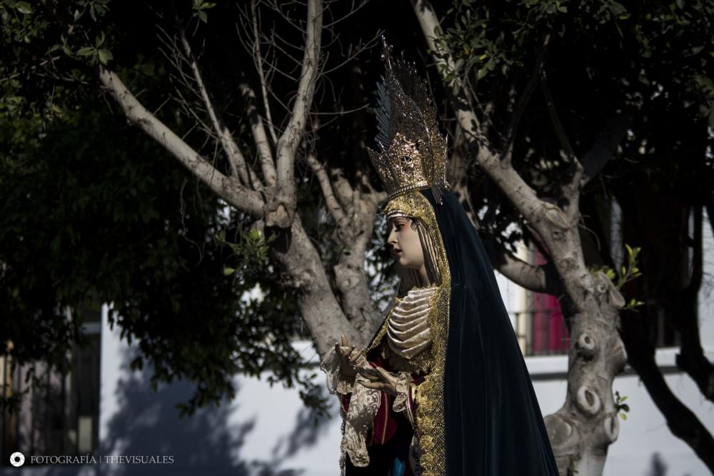 Faltan 49 Días para el Domingo de Ramos.