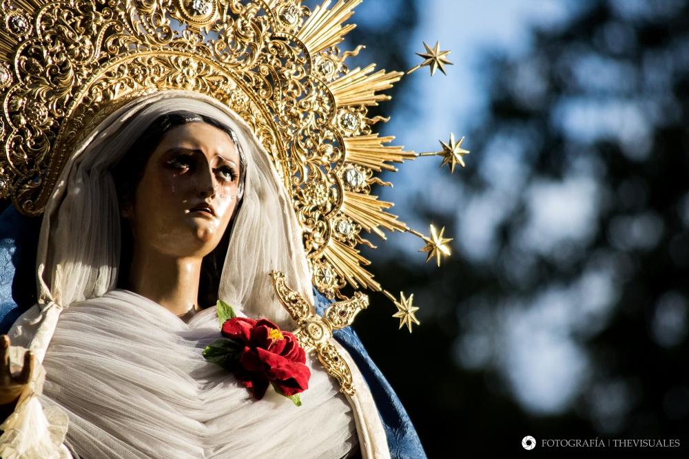 17 Días para el Domingo de Ramos