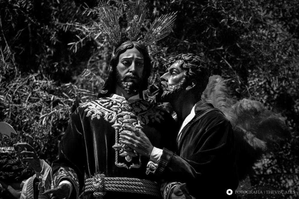 Rey de Capuchinos